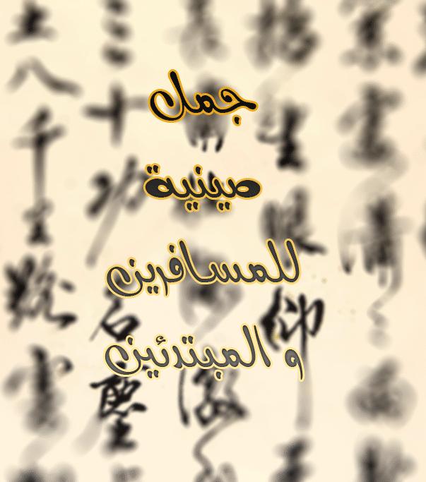 جمل صينية للمسافرين و المبتدئين
